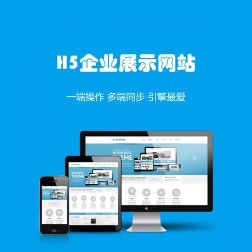 网站建设服务:展示型网站